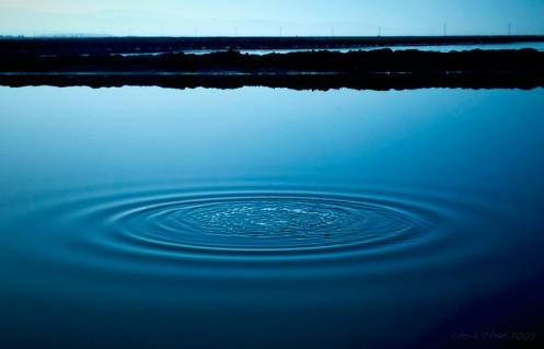 pond_ripples_jerry
