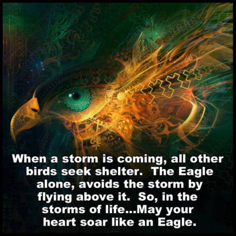 eagle storms and flying above it