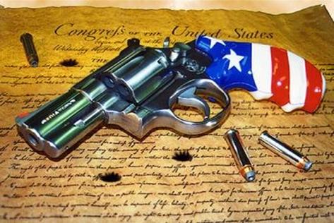 AMERICA GUNS CONSTITUTION