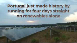 Greenpeace Portugal History May 2016 All Renewables