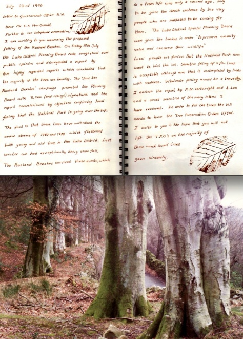 pg 25 Beeches, Boreholes and Badgers