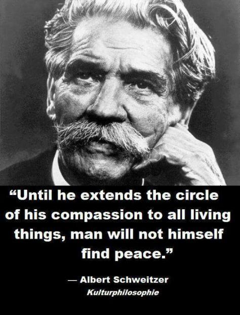 Compassion empathy oneness environmental justice quote Mario Lambriche