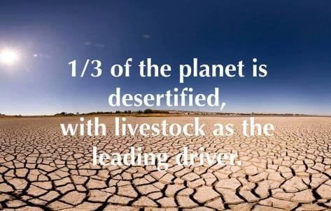 cows beef desertification cutting down forests extinction Kumari Kandam 75,000 BCE