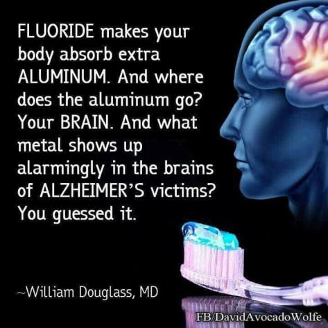 Flouride aluminum link in brain and Alzheimers